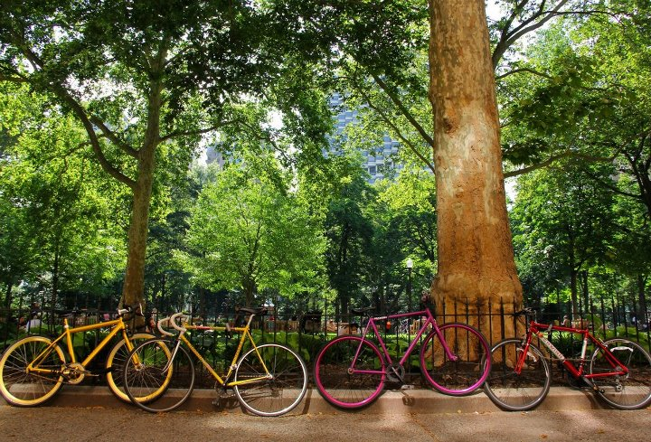 Photo of the Week: Summer in the Park